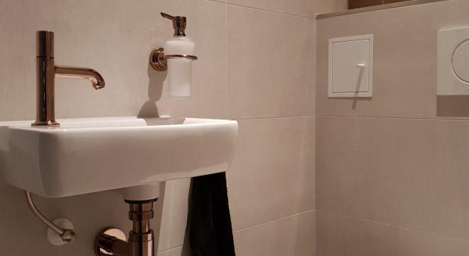 Luxe toilet in Surhuisterveen - Wastafel